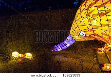 Vivid Sydney At Taronga Zoo Echidna And Ant Light Sculpture