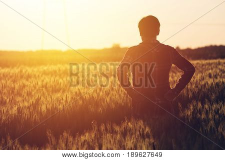 Concerned female agronomist standing in cultivated wheat crops field and looking to a beautiful sunset on the horizon
