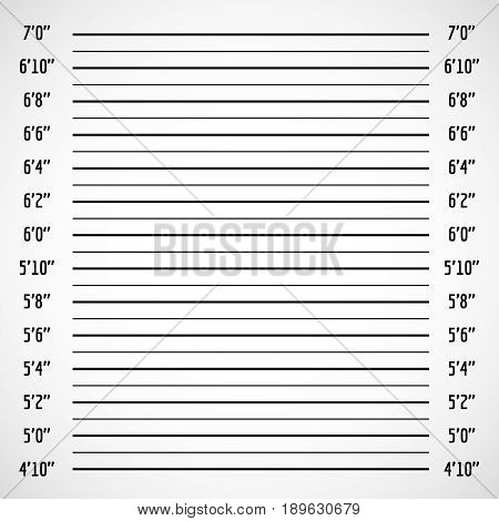Blank criminal police lineup or mug shot vector background. Police wall for height line up photography illustration