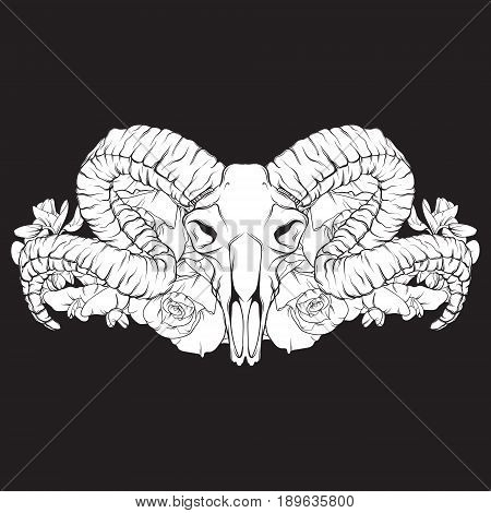 Vector hand drawn illustration. Artwork with skull of ram flowers. Alchemy religion spirituality occultism tattoo art. Template for postcard banner poster print for t-shirt.