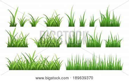 Nature illustrations of green field grass. Vector set isolate on white. Lawn grass green, herb horizontal boarder