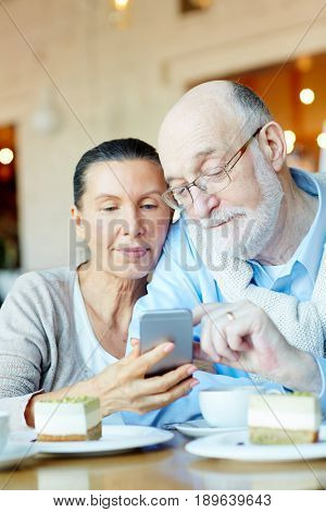 Affectionate seniors with smartphone searching in the net