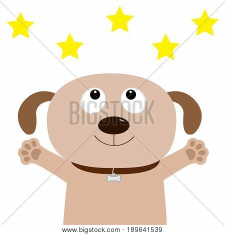 Dog face. Pet collection. Puppy pooch looking up to yellow star shape paw print hug. Flat design. Cute cartoon funny character. White background. Isolated. Vector illustration