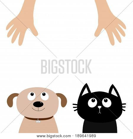 Helping hand. Dog Cat Pet adoption. Puppy pooch kitty cat looking up to human hands. Flat design. Help homeless animal concept. White background. Isolated. Vector illustration