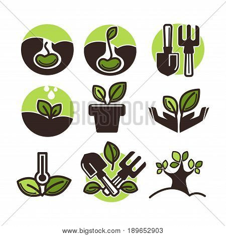 Plants icons of growing tree seed or green sprout. Vector isolated symbols of garden spade and rake for planting, horticulture or gardening