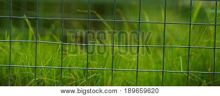 Grass,green,gardening,net,park,nature lover,keep away area,fresh air,lovely view in garden