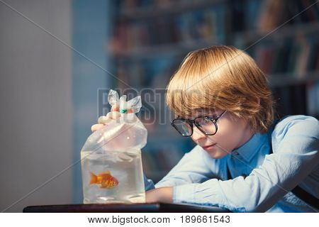 Little boy with a goldfish indoors