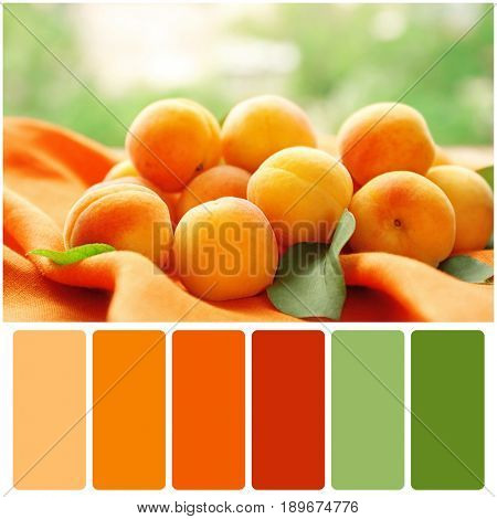 Color matching palette. Tasty apricots on blurred background