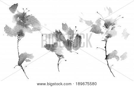 Ink illustration of flowers. Sumi-e u-sin painting.