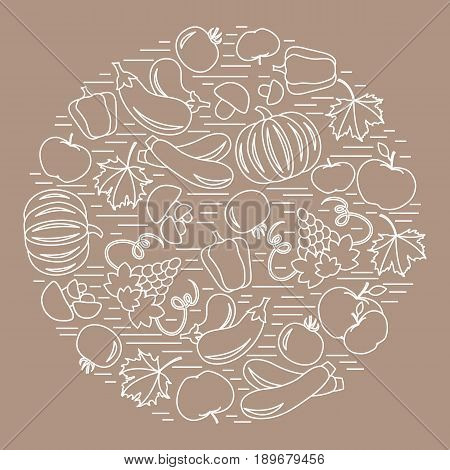 Set of autumn seasonal fruits and vegetables in circle. Tomato pepper grapes zucchini and other fall fruits and vegetables for announcement advertisement flyer or banner.