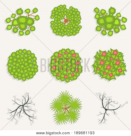 Trees In Top View. Set Of Green, And Burnt Trees For Architectural And Landscape Design. View From A