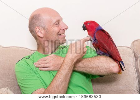 Man Smiling At Parrot Say On His Arm