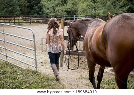 Caucasian woman walking horse in pen