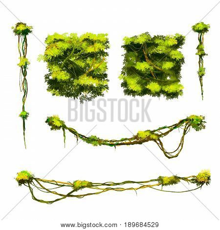 Set of cute cartoon tropical vines and bushes isolated on white