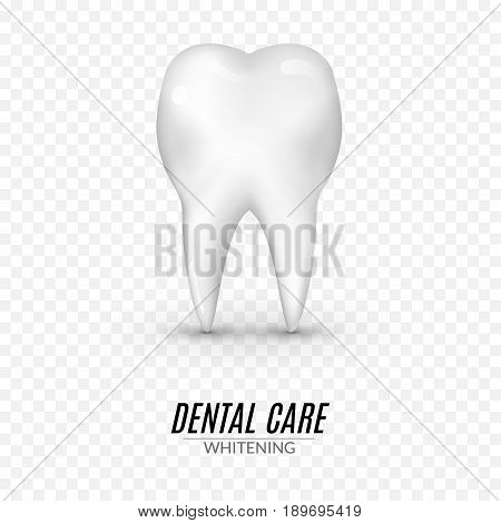 Dental care poster design. Tooth Icon clean healthy vector Concept. Isolated icon on transparent.