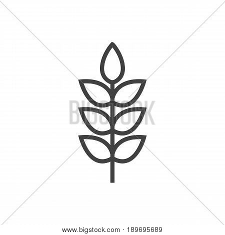 Isolted Grain Outline Symbol On Clean Background. Vector Wheat Element In Trendy Style.