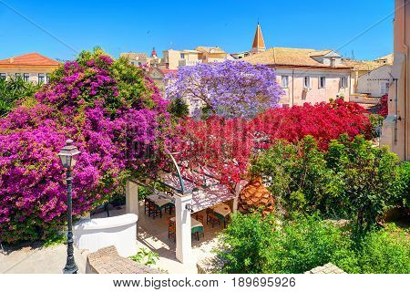 Corfu island garden park colorful trees flowers, classical Greek old houses buildings architecture of Greece Corfu island Kerkyra Greece holidays vacation tours. City garden park restaurant cafe