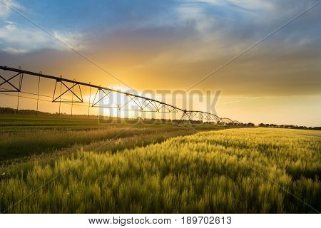 Irrigation system on wheels on wheat field at sunset in spring. Agricultural technologies poster