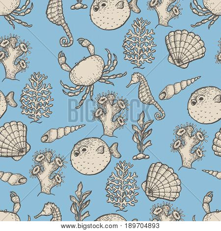 Hand drawn outline sea life illustration. Sketch seamless pattern