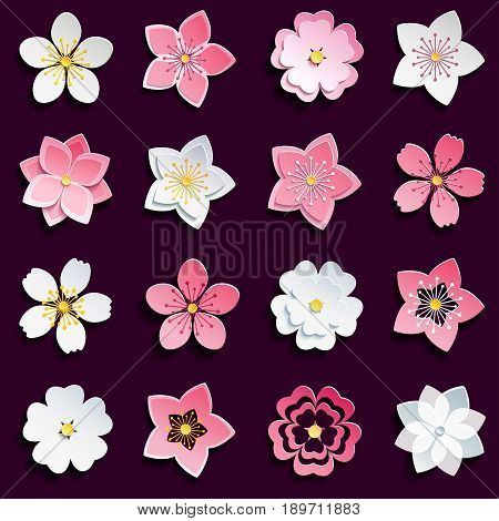 Set of beautiful pink white 3d sakura blossom - japanese cherry tree cutting paper. Stylish spring or summer flowers isolated on black background. Modern floral design elements icons. Vector illustration