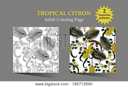 Adult antistress coloring page. Seamless pattern with tropical plants, flowers and citron Buddha s hand . Vector illustration.