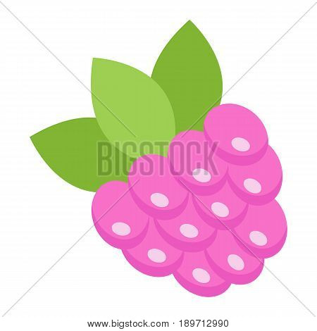 Raspberry flat icon, fruit and diet, vector graphics, a colorful solid pattern on a white background, eps 10.