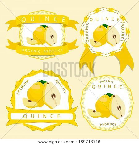 Vector illustration logo for whole ripe yellow fruit quince,green stem leaf cut half sliced pear background.Quince pattern consisting of natural sweet food.Eat fresh tropical fruits quinces to health.