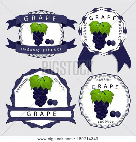 Vector illustration logo for whole ripe fruit colored grape with green stem leaf cut sliced. Grape drawing pattern consisting of tag label bow peel fruits pip ripe sweet food. Eat fresh grapes health.