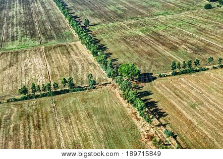 Airplane bird eye view Green yellow rural country village field for vegetables, wheat with cross of green trees. Europe european green fields. Italian yellow wheat fields. Green trees line, rural road