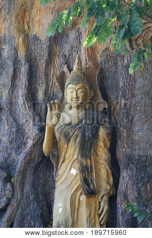 A ancient wooden carving of standing peace buddha on big tree and painted with yellow color at large historical temple nearby bangkok, Thailand