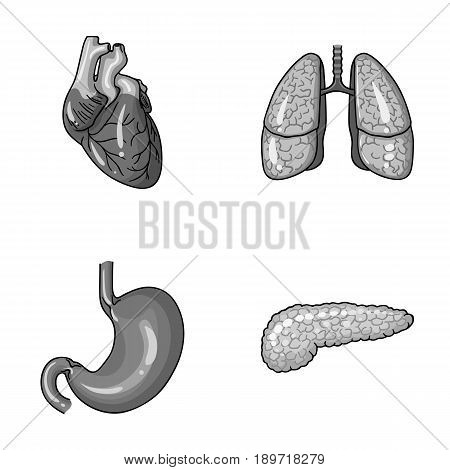Heart, lungs, stomach, pancreas. Human organs set collection icons in monochrome style vector symbol stock illustration .