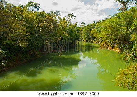 Beautiful River On A Background Of Green Bushes With Trees, Bohol Island, Philippines.