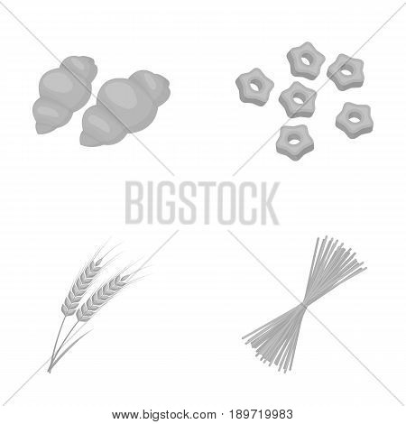 Different types of pasta. Types of pasta set collection icons in monochrome style vector symbol stock illustration .