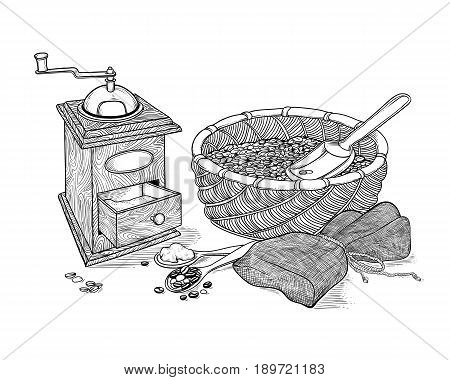 Vector sketch drawing vintage coffee grinder, ground coffee and beans. Wicker basket with grain and shovel, burlap sack tied with rope. Illustration black and white of ingraving style