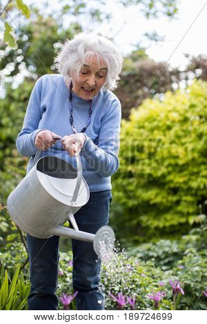 Senior Woman Outdoors Watering Flowers In Garden