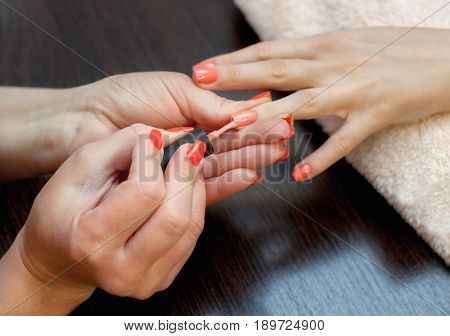 The Master Of The Manicure Paints Nails With Nail Polish During The Procedure Of Nail Extensions Wit