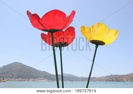 31ST MAY 2017, CALIS, TURKEY: Large ornamental flowers against a blue sky along the promenade between calis and fethiye in turkey, 31st may 2017