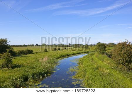 Canal Landscape In Summer
