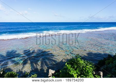 Scene across ocean todistant horizon from land over patterns of coral reef and shadows of three palm trees on water below on Tamakautoga coral beach