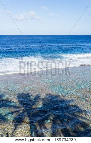 Vertical composition scene across ocean todistant horizon from land over patterns of coral reef and shadows of three palm trees on water below on Tamakautoga coral beach