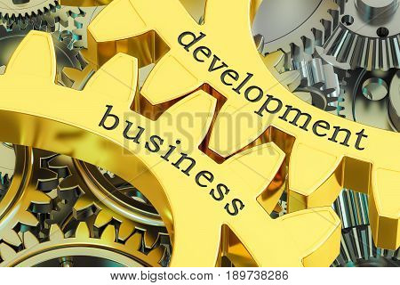 Development Business concept on the gearwheels 3D rendering
