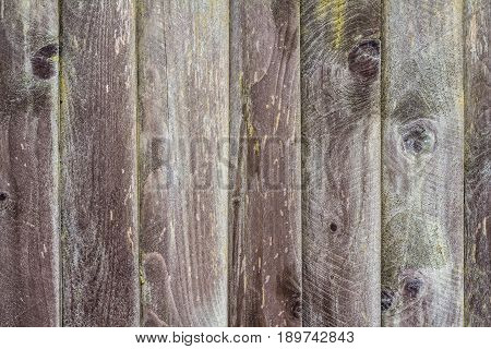 Wooden background of seven boards. Knots and resin are visible