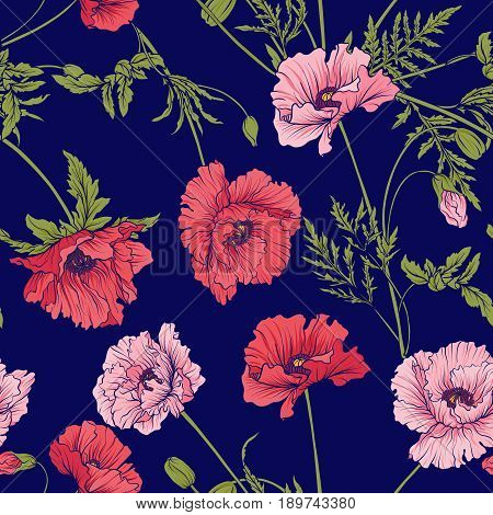 Seamless pattern with pink and red poppy flowers in botanical style on blue background. Stock line vector illustration.