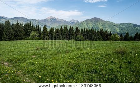 spring mountain meadow with near Podsip settlements above Orava river in Velka Fatra mountains with Stoh rocky Velky Rozsutec and other hills of Krivanska Mala Fatra mountains in Slovakia