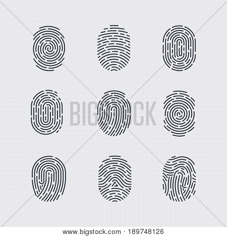 Types of Fingerprint Patterns for Identity Person Security ID on Gray Background for Design