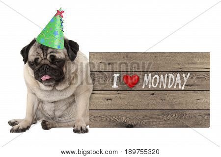 fed up pug puppy dog wearing party hat sitting down next to wooden sign with text I love monday isolated on white background