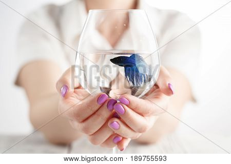 Woman Holding A Goldfish In Her Hands With Water