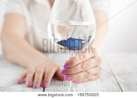 Small Fish In Wine Glass, Clear Water In Hands