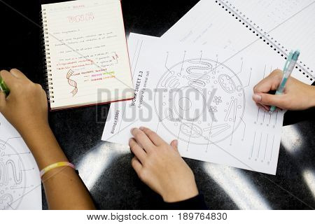 High school students hands working on cell anatomy work sheet