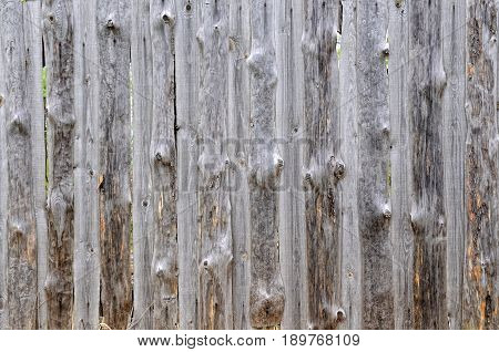 Background of old pine slabs without bark